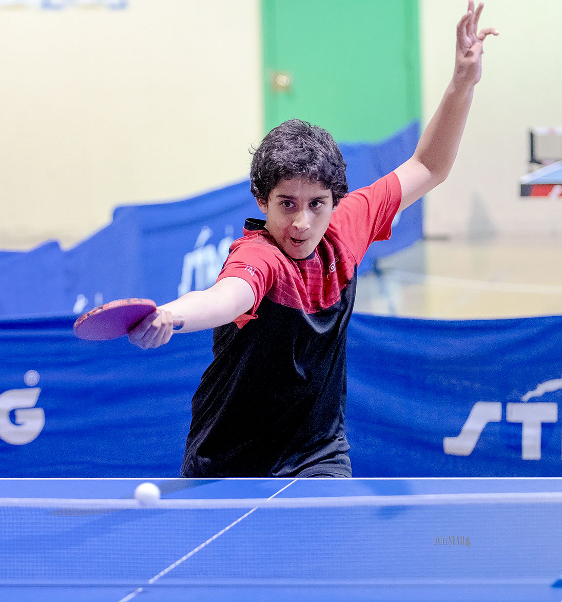 Whitehorse Daily Star: Bachli repeats as table tennis champ while Gaw unseats former champ